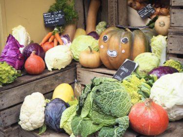 エネルギーが高まる食事とは?「80/20ルール」で心地よく続ける食事習慣。