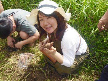 マレーシアでオーガニックを楽しもう!GK Organic Farm 週末農園ツアー&ランチビュッフェに参加しました
