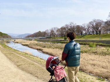 京都に住み始めて1週間。早速この街が大好きになりそうです。