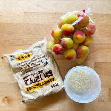 【7月10日までレシピ公開】材料3つ。塩麹梅シロップの作り方。